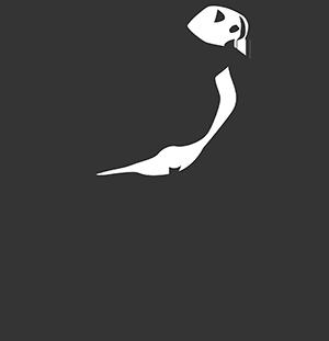 Atlantic Paint